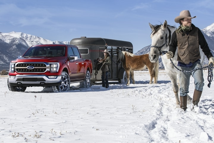 Two people unloading horses from a trailer attached to a 2021 Ford F 1 50 King Ranch